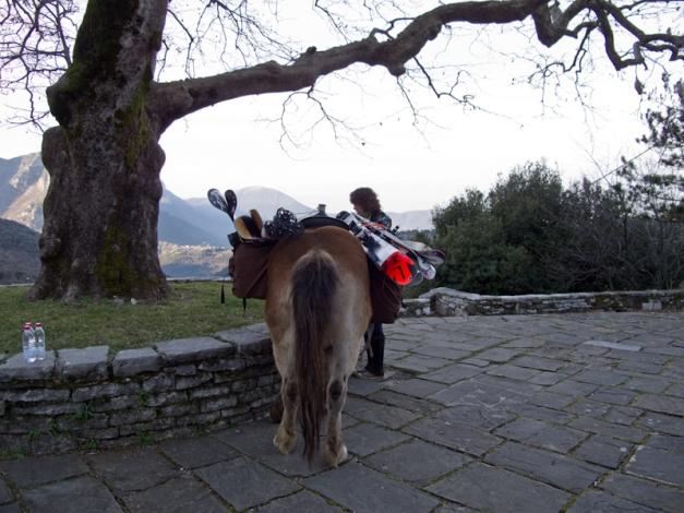ski-horse